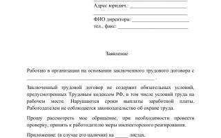 Трудовая инспекция в Краснослободске: как записаться на прием, документы