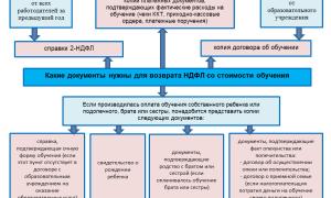 Оплата учебы в дошкольном заведении может начаться с момента рождения – Заполнение декларации 3-НДФЛ онлайн