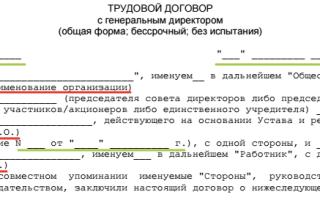 Трудовой договор с руководителем организации (Документ Кондратьевой Е.В.) – бланк 2020