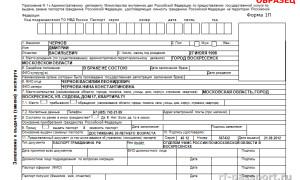 Пустой бланк заявления – скачать о выдаче паспорта, загранпаспорта или на развод