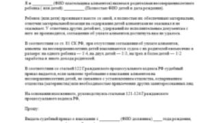 Заявление о выдаче судебного приказа о взыскании алиментов на ребенка в браке: образец