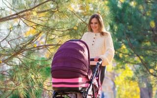 Пособие при рождении ребенка в 2020 году: виды и размеры, какие положены и как получить, если мать не работает