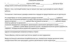 Как подать на алименты – порядок составления заявления и обращения в суд, необходимый пакет документов