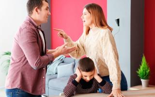 Алименты на ребенка в размере прожиточного минимума в 2020 году: будет ли принят новый закон