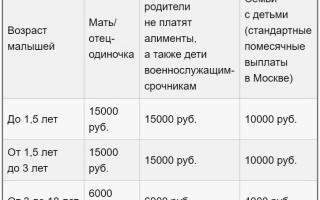 Как получить справку о доходах для малоимущих в России в 2020 году