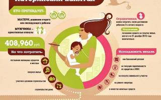 Использование материнского капитала на ремонт квартиры или дома
