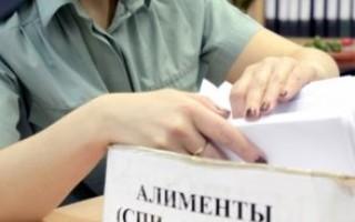 Уклонение от уплаты алиментов: кто считается злостным неплательщиком
