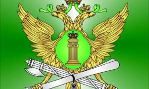 Федеральные службы судебных приставов вРФ и их обязанности